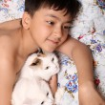 Happy boy with cats — Stock Photo #1115906