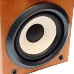 Round bass sound speaker — Stock Photo #1116234