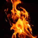 Bonfire flame — Stock Photo #1124002