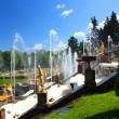 Petergof park in Saint Petersburg Russia — Stock Photo #1125484