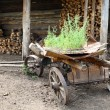 Old obsolete wagon — Photo