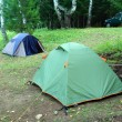 Two tents in forest — Stock Photo #1129732