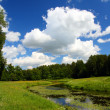Pond landscape in Pavlovsk park — Stock Photo