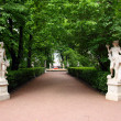 Stock Photo: Summer gardens park in Saint Petersburg