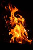 Bonfire flame — Stock Photo