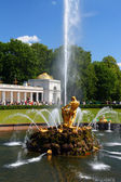 Samson fountain in petergof — Stock Photo