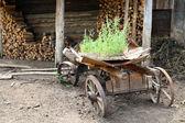 Old obsolete wagon — Stock Photo