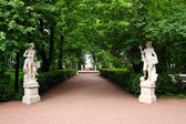 Summer gardens park in Saint Petersburg — Stock Photo