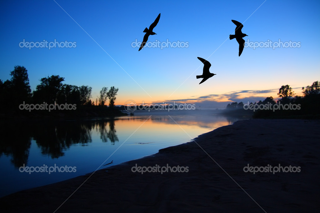 River dusk landscape with gulls after sunset  Stock Photo #1125585
