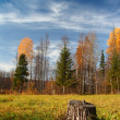 Autumn landscape in Ural mountains - Stock Photo