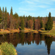 Autumn landscape with forest lake — Stock Photo