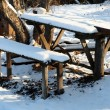 Benches and table in winter garden - Stok fotoğraf