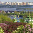 kyiv botanic garden — Stock Photo
