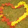 Stock Photo: Heart symbol made from leaves