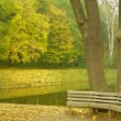 Bench in autumn park — Stock Photo #1109669