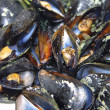 Opened boiled mussels — Photo