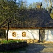 Stock Photo: Typical thatched roof house