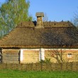 Typical thatched roof house — Stock Photo