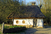 Typical thatched roof house — Foto Stock