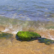 Stones in the water — Stock Photo