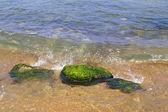 Stenen in het water — Stockfoto