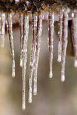 Long icicles on the wooden roof — Stock Photo