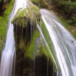 Waterfall in forest — Stock Photo #1138483