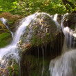 Waterfall in forest — Stock Photo #1138487