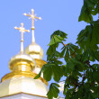 Stock Photo: Chestnut leaves and church domes