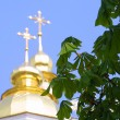 Chestnut leaves and church domes - Stock Photo