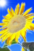 Fractal image of sunflower — Stock Photo