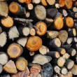 Firewood — Stock Photo #1115071