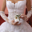 Bride — Stock Photo #1149980