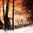 Rural winter landscape — Stock Photo