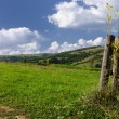 Rural landscape with fence — Stock Photo