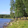 Stock Photo: Izhbulat - lake near Forest