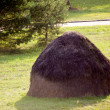 Haystack — Stock Photo #1334722