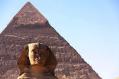 Great ancient sculpture of egyptian sphinx and p — Stock Photo