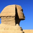Great ancient sculpture of egyptian sphinx and p — Stock Photo #1810266