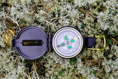 Compass is based on reindeer moss — Stock Photo