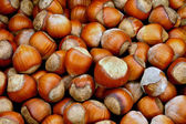 Nuts a filbert — Stock Photo