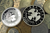 Silver and usual coins — Stock Photo