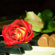 Rose and chocolate hearts in a piano — Stock Photo