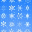 20 beautiful cold crystal snowflakes — Stock Vector