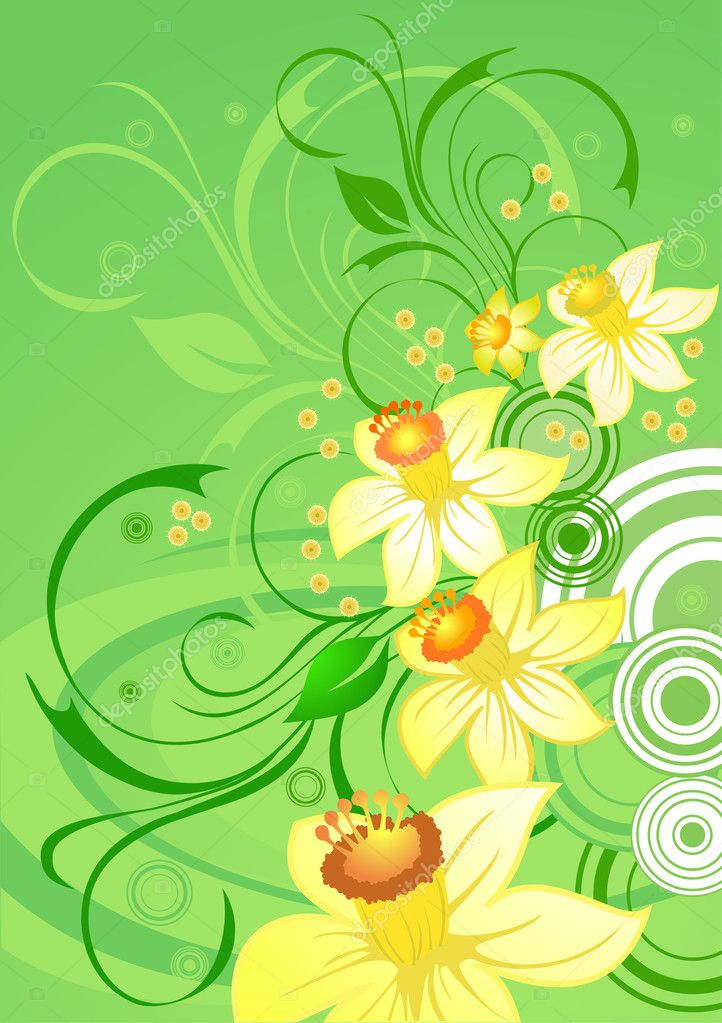 Daffodils on green floral background  Stock Vector #1378964