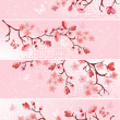 Cherry blossom, banner. - Stock Vector