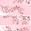Cherry blossom, banner. — Stock Vector