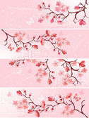 Cherry blossom, banner. — Stock Vector