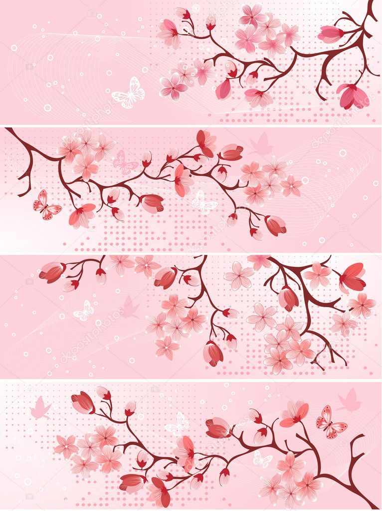 Cherry blossom, banner. Vector illustration   — Stock Vector #2547652