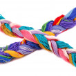 Stock Photo: Plait of colour